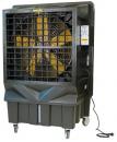 Охладитель воздуха Master BC 220 во Владивостоке